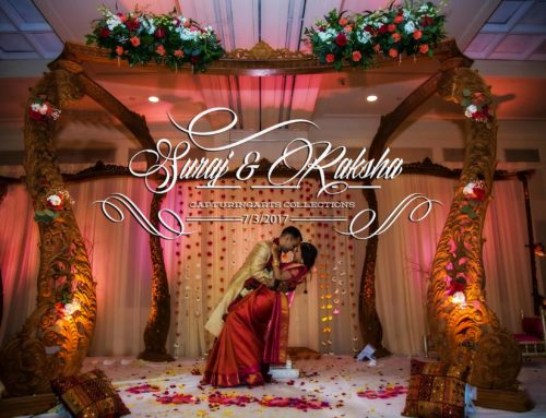 Suraj & Raksha Hindu Wedding West Bloomfield Michigan